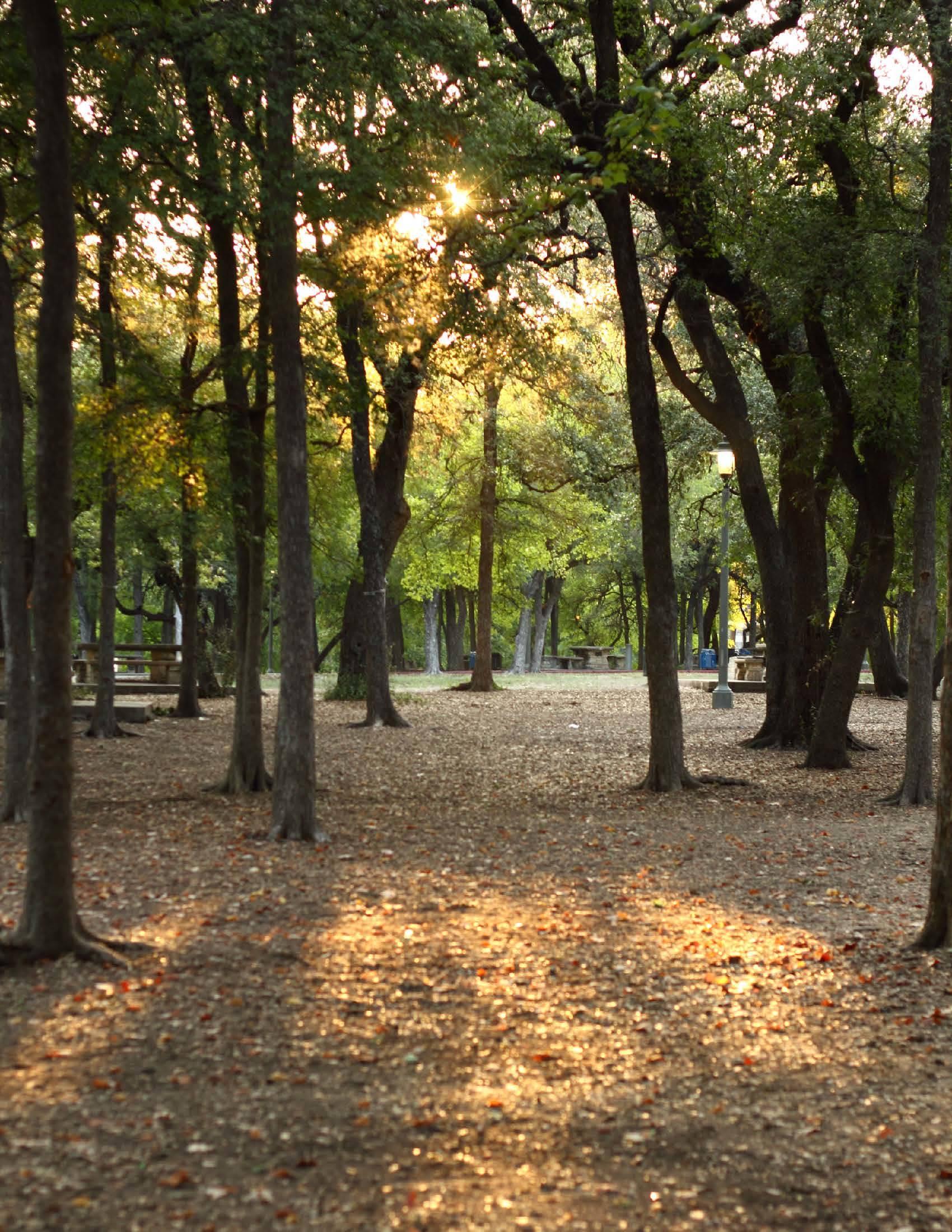 work5hop | Walking Distance:<br /><small>Brackenridge Park Master ...